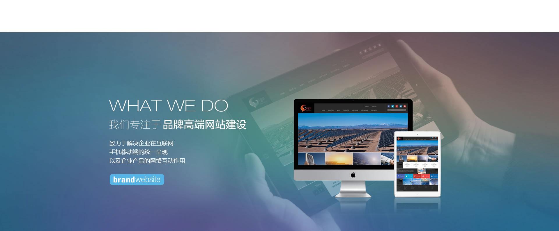 我们专注于品牌网站服务