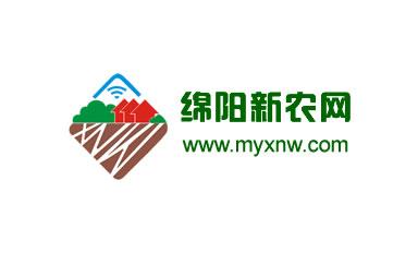 网站建设案例:绵阳新农网