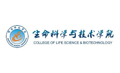 网站建设案例:绵阳师范学院生科院